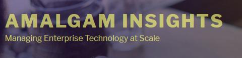 Amalgam Insights Logo